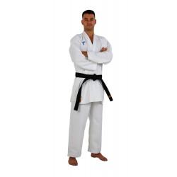 Karategi Kumite Master Tagoya WKF