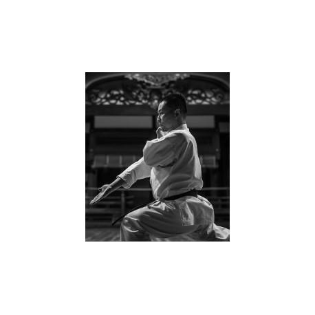 Karategi tokaido kata master pro wkf kata 14oz - Tagoya